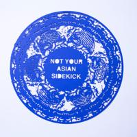 Not your asian sidekick.jpg